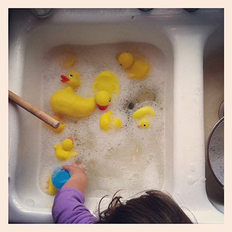 duck wash