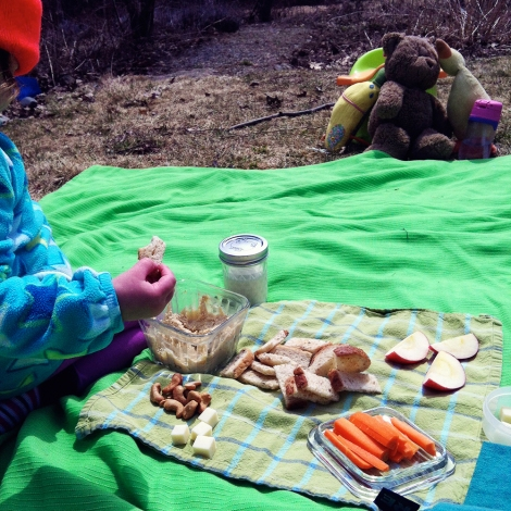 first_picnic