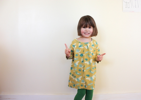 raglan sleeve dress by hamster and the bee